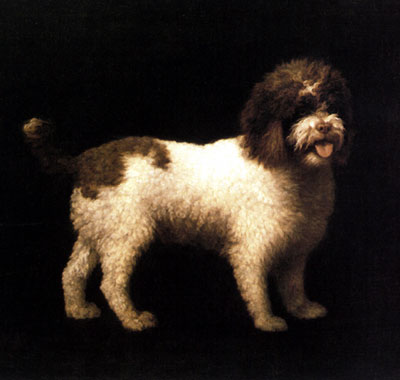 """""""A Water Spaniel"""" by George Stubbs"""