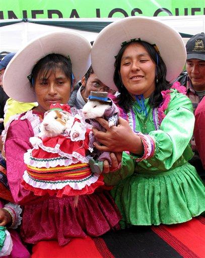 Peru Guinea Pig Festival