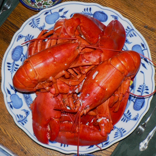 I love boiled lobster, but it's not nearly as good as Alaskan snow crab. (Drools like Homer Simpson)