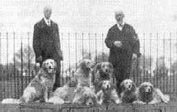 The Russian retrievers with their owner, Colonel Trench.