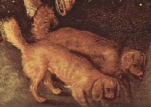pisanellos-spaniels