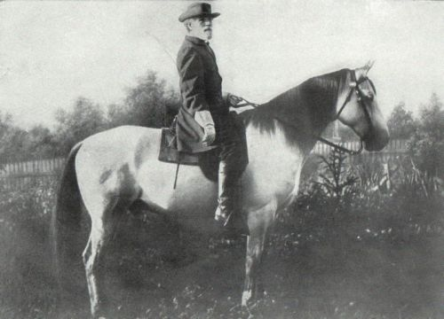 Traveller and Robert E. Lee