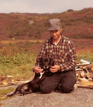 St. John's water dog pup