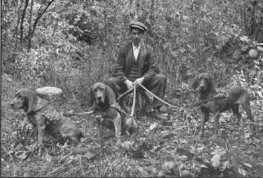 http://retrieverman.files.wordpress.com/2011/06/musgraves-west-virginia-man-trailing-bloodhounds.jpg