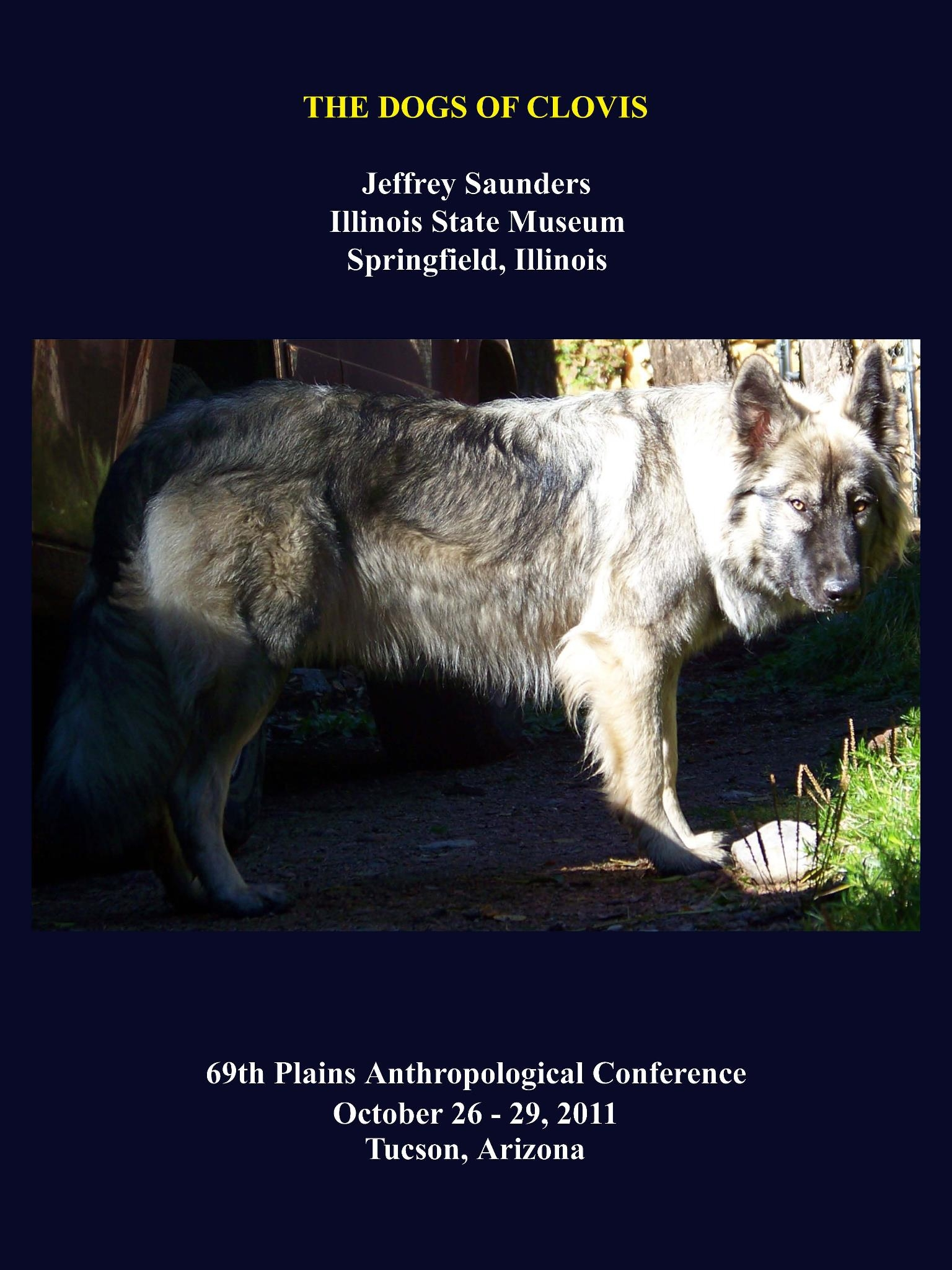 domestication of wolves 2018-6-11 video created by duke university for the course dog emotion and cognition in this module, dr hare explores three of his research studies he's done with foxes, new guinea singing dogs, as well as research on wolves.