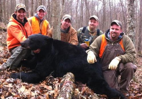 giant west virginia bear