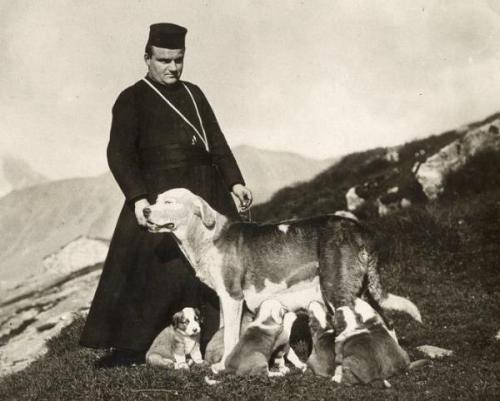 st. bernards 1913