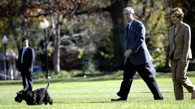 George W  Bush's Scottish terrier dies | Natural History