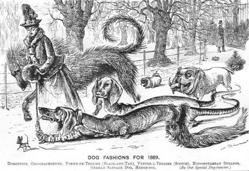 dog fashions 1889