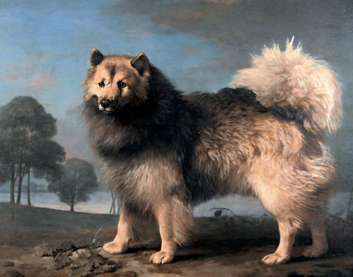 George Stubbs elkhound