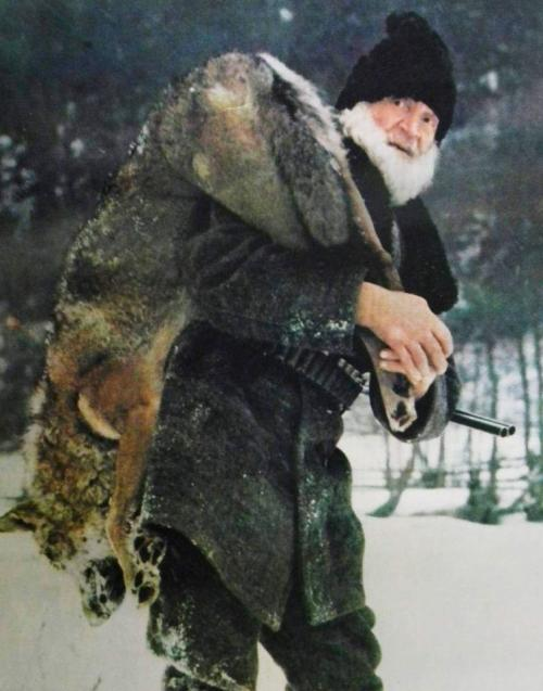 Romanian wolf hunter