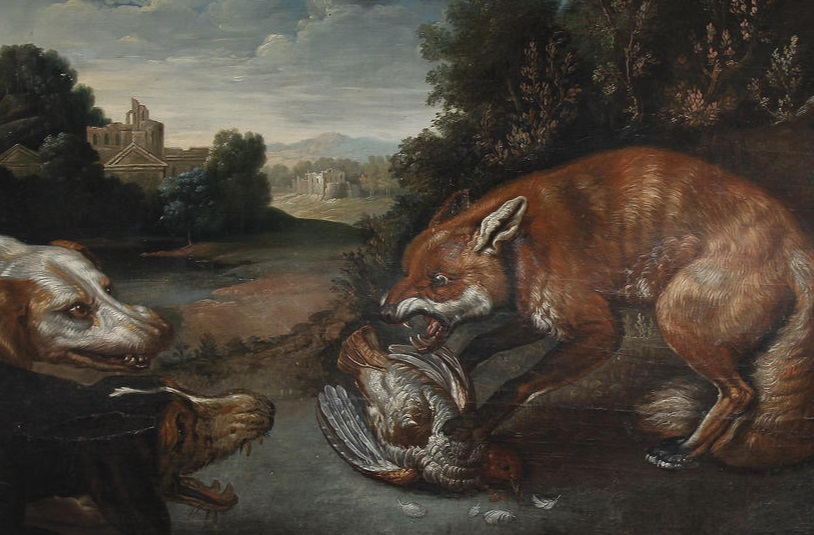 Image result for picture of a fox with its kill