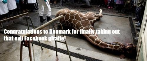 Denmark Zoo Kills Giraffe