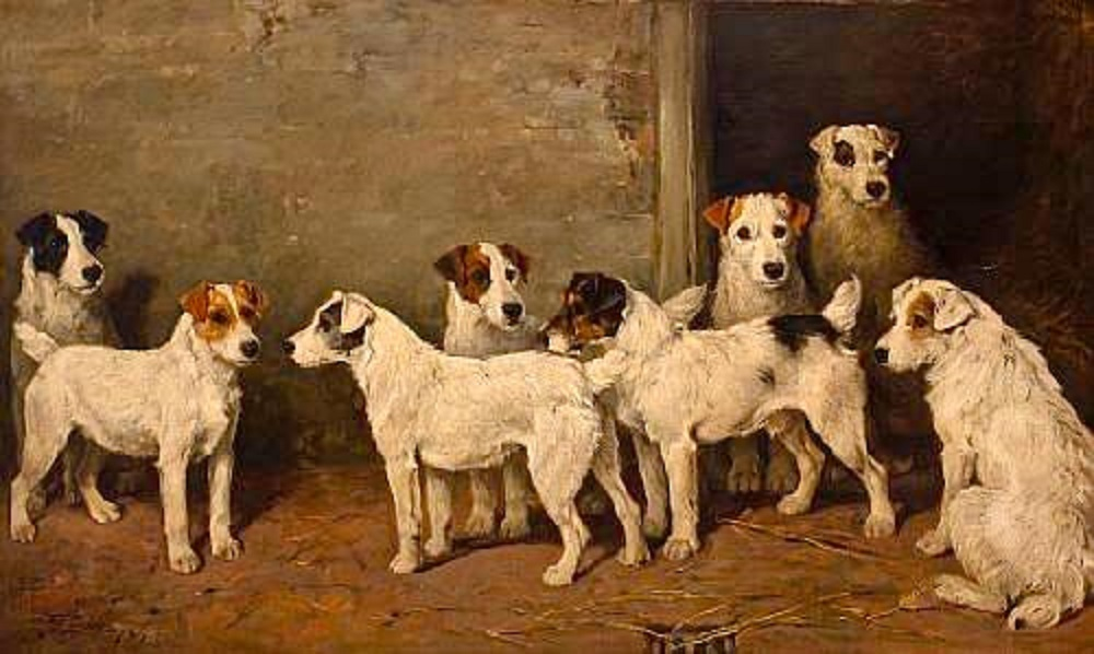 Image result for fox hunting dog paintings