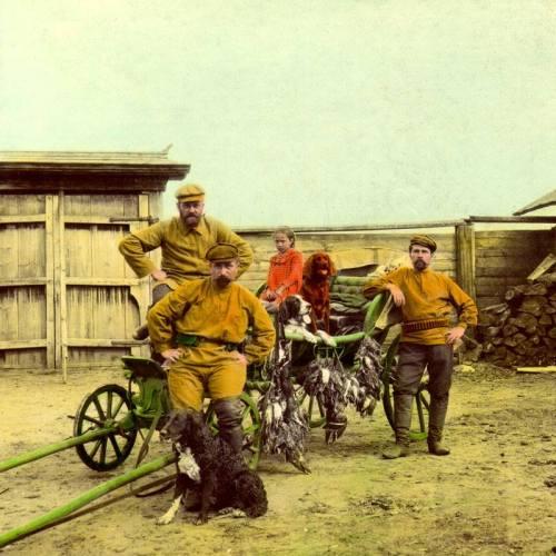 Russian gun dogs 1907