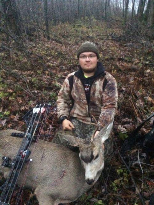 mule deer in WI