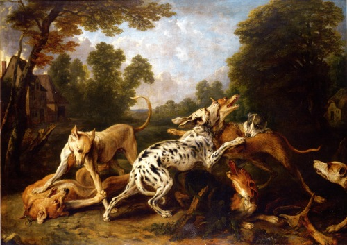 dog fight frans snyders
