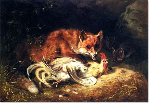 fox attacking chickens